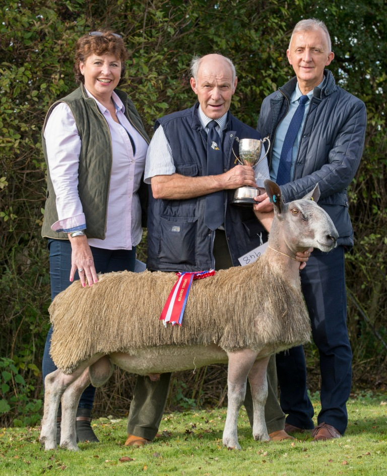 Blue Faced Leicester Sheep Breeders Association Show and Sale - KLF